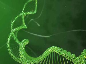 sélection génétique