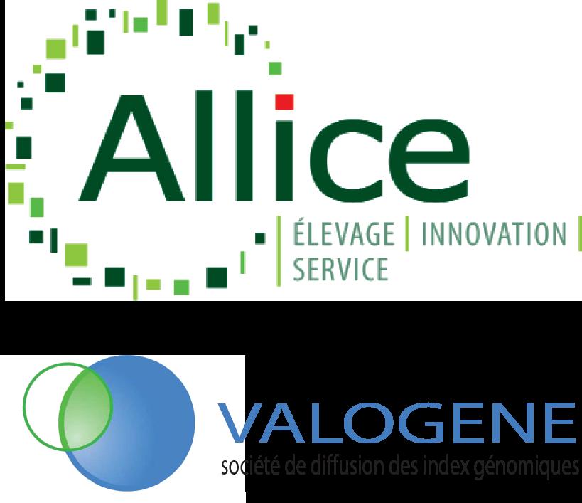 Allice recrute un responsable opérationnel (H/F) pour Valogène