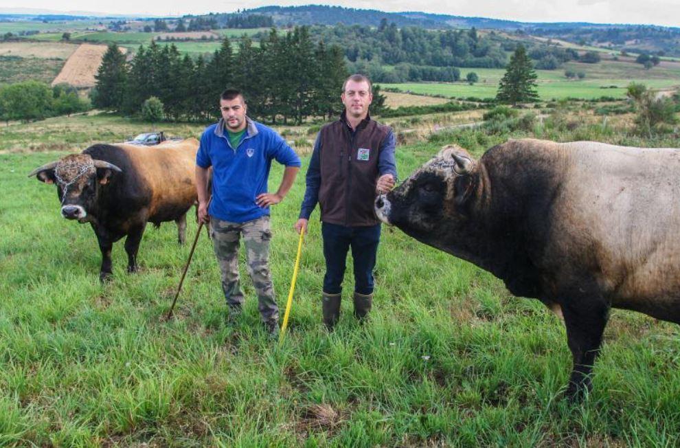 Renouveler les générations d'éleveurs