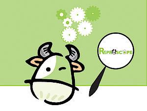 REPROSCOPE - Mise en ligne d'un nouvel outil web pour évaluer et améliorer les performances de reproduction du troupeau bovin