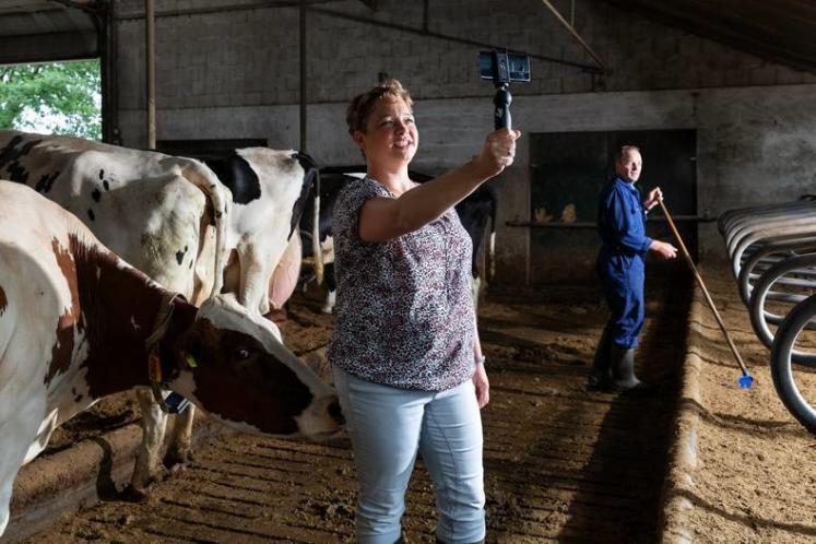 Heleen Lansink-Marissen, éleveuse de 85 laitières aux Pays-Bas