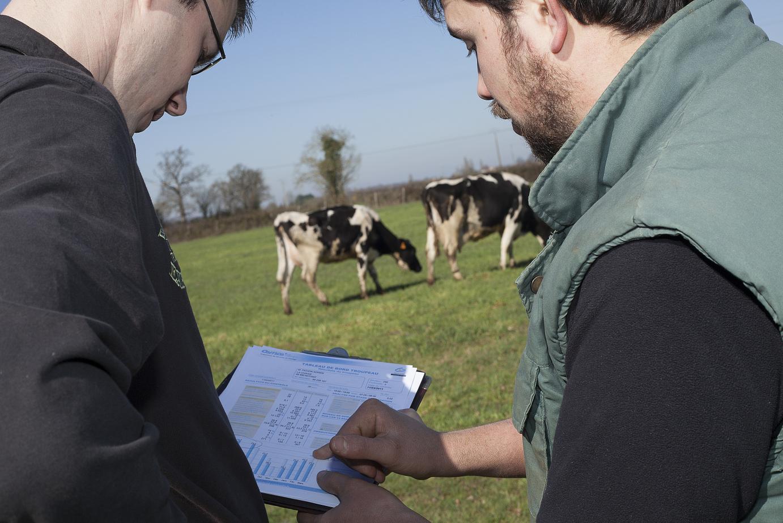 conduite d'élevage