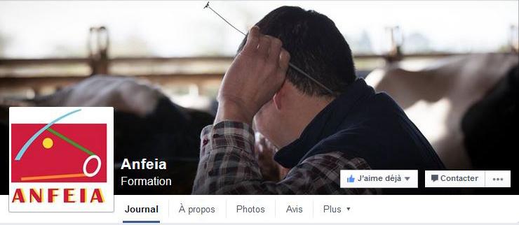 Facebook Anfeia