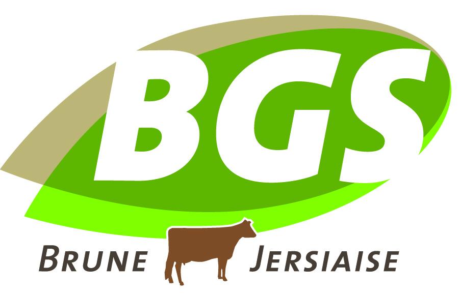 Offre d'emploi - BGS recrute un(e) assistant(e) technique en CDD