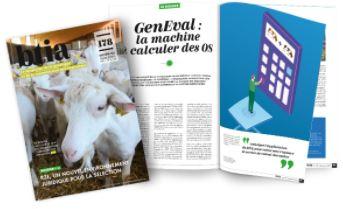 GenEval