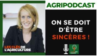 Le podcast de Caroline Le Poultier Helleisen
